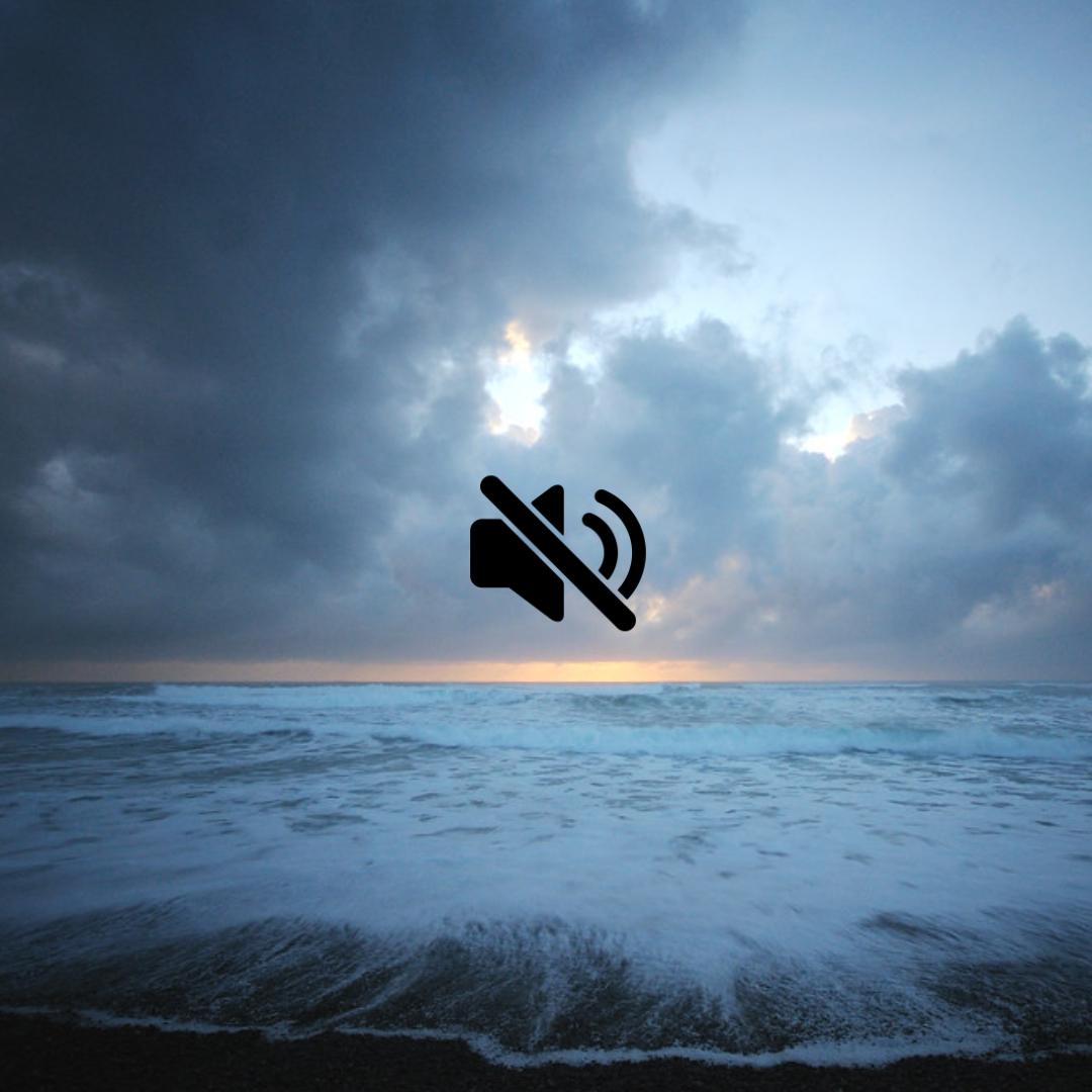 Ocean_mute